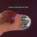 ANSWER CODE REQUEST 『Code』