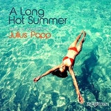 VARIOUS ARTISTS	『A Long Hot Summer Mixed And Selected By Julius Papp』