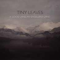 TINY LEAVES 『A Good Land, An Excellent Land』 優しさと感傷が同居するポスト・クラシカル作