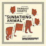 PARQUET COURTS 『Sunbathing Animal』