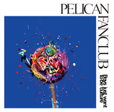 PELICAN FANCLUB 『Boys just want to be culture』 暗さも明るさも飲み込んだクールな楽曲たち